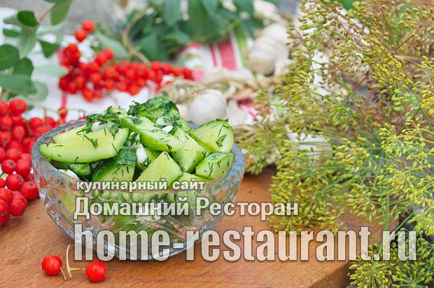 Малосольные огурцы быстрого приготовления с чесноком и зеленью фото