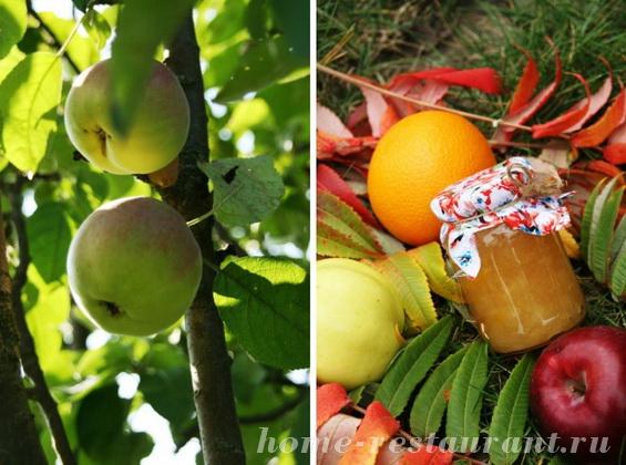 яблочно-апельсиновое повидло фото 5
